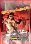 Caning And Bullwhipping