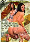 Transsexual Encounters
