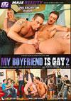 My Boyfriend Is Gay 2