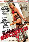 Transsexual Escorts Vol. 9