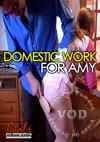Domestic Work For Amy